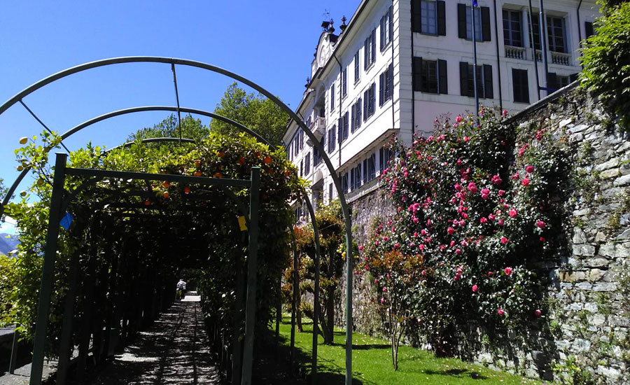 villa carlotta giardino