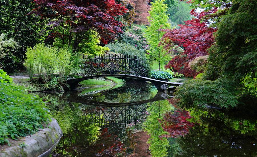 uno splendido giardino
